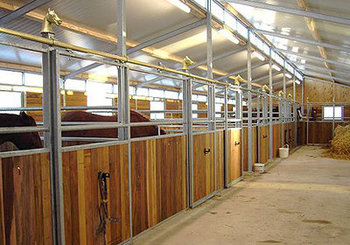 Hardhout Paardenboxprofiel 28mm dik 130mm breed